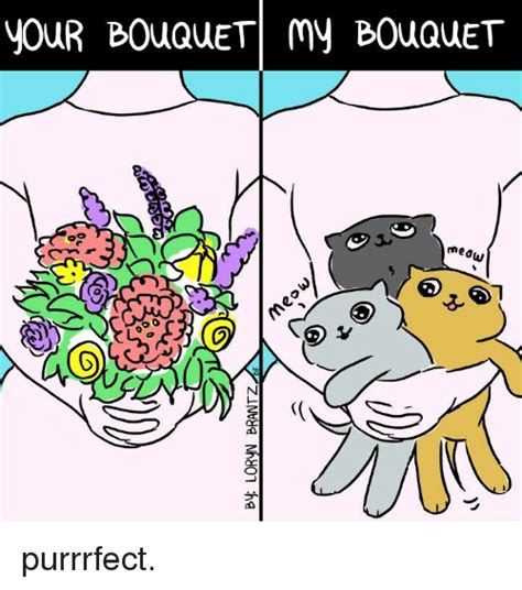 Purrrfect Meme - your bouquet my bouquet meow purrrfect meme on sizzle