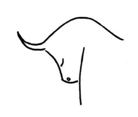 sternzeichen stier wann bis wann stier daten exaktes stenrnzeichen datum die 2