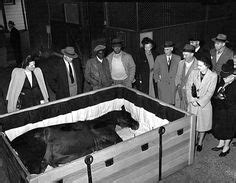 famous people in their caskets cool coffins on pinterest casket ghana and funeral