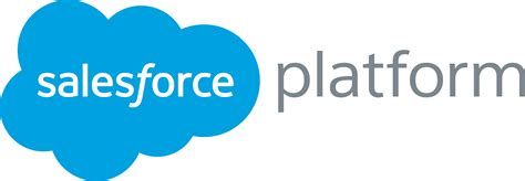 salesforce sales getting started with salesforce app cloud salesforce