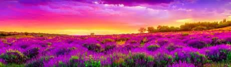 beautiful landscape free headers