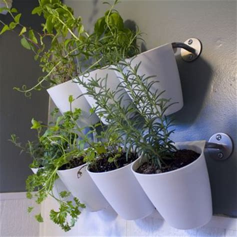 108 Best Images About For The Home On Pinterest Kitchen Hanging Wall Herb Garden
