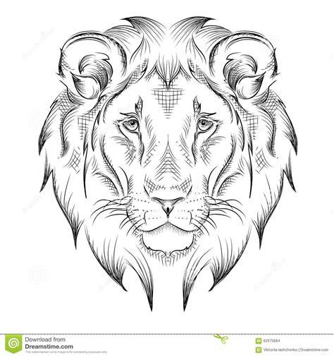 Lion Dessin Illustration De La Face Du Lion Illustrationl