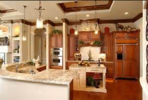 Decorating Ideas For Kitchens Decorating Themed Ideas For Kitchens Afreakatheart