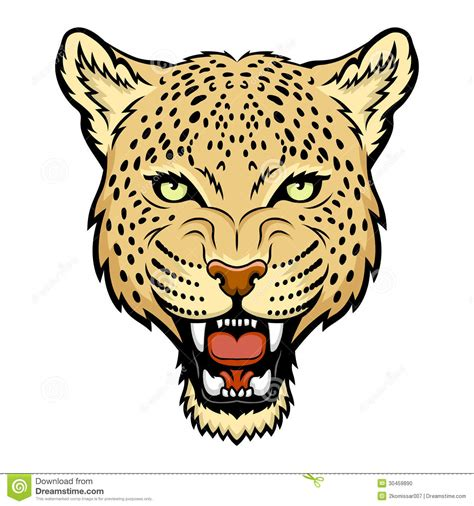leopard stock photo image 30459890