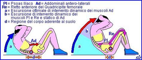 dolore gabbia toracica posteriore addominali