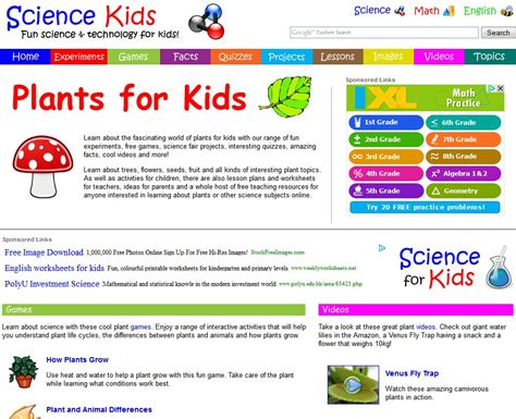 Plant Taxonomy Research Papers by Essay Plants Illustrationessays Web Fc2