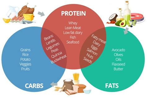 carbohydrates kcal per gram calculating macronutrients your calorie protein carbs
