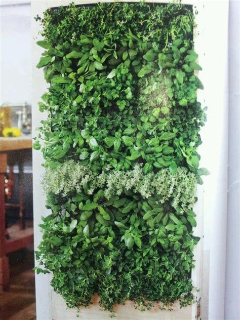 vertical herb garden products i