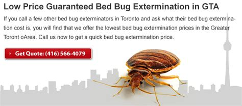 professional bed bug exterminators bed bug exterminator pro toronto on 1435 bloor st w