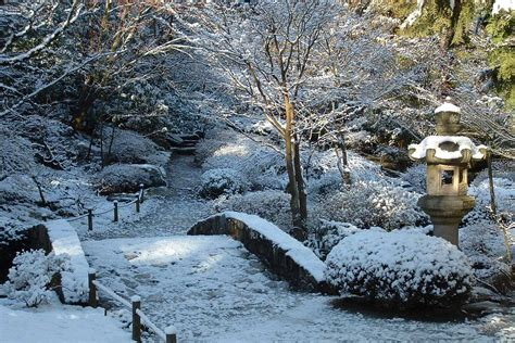 japanese garden in winter japanese garden parks seattle gov