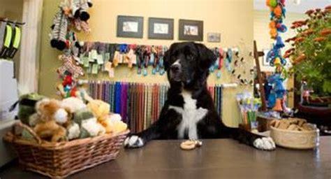 shoo for puppies devant la boutique picture of the shop bathhouse boutique mahone bay