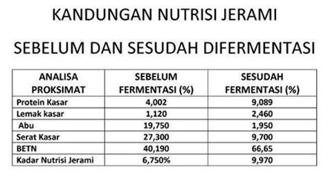 Fermentasi Pakan Ternak Sapi jerami fermentasi untuk pakan ternak