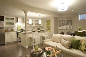 Kitchen With Living Room Design Stunning Small Living Room Ideas Houzz Greenvirals Style