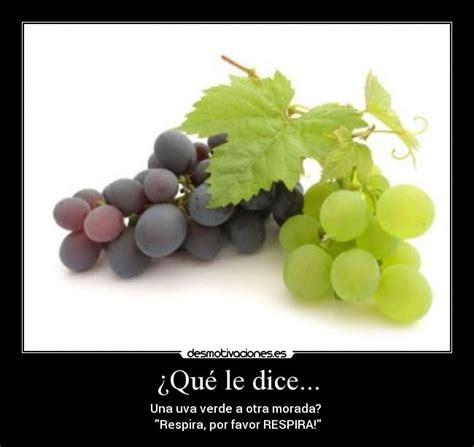 imagenes de uvas verdes y moradas 191 qu 233 le dice desmotivaciones
