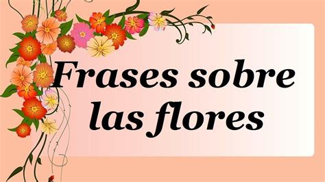 frases de rosas frasesypensamientoscomar frases sobre flores los m 225 s bonitos pensamientos sobre