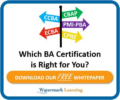 Http Mba Uncc Edu About Certificates Business Analytics by Business Analyst Certification Business Analysis