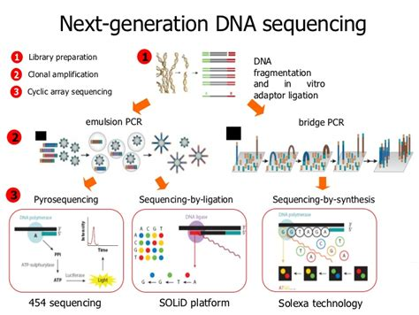 illumina next generation sequencing introduction to next generation sequencing