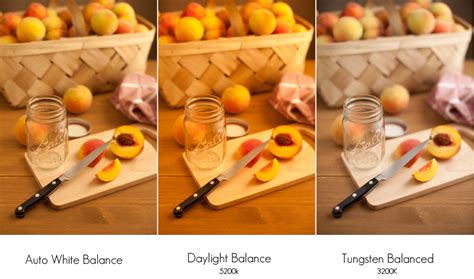 tungsten light bulbs for photography color temperature and food photography