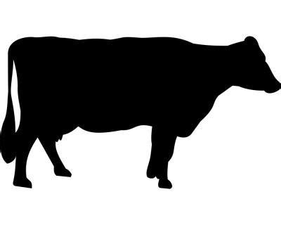 Kuh Aufkleber Folie by Kuh Aufkleber Plot4u