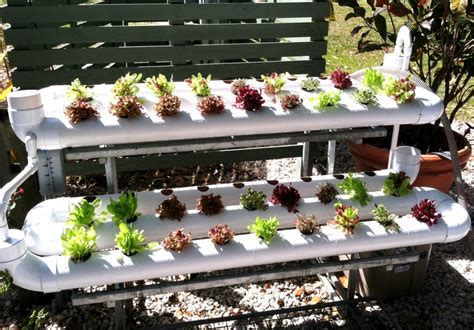 backyard hydroponic garden how to build a hydroponic garden 11 steps with pictures