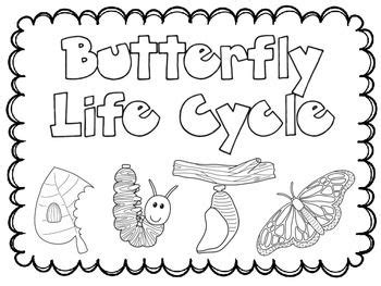 coloring pages butterfly life cycle 69 best butterflies and bugs images on pinterest