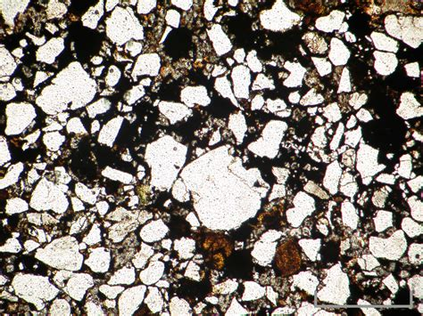 sparite thin section cambridge rocks minerals fossils