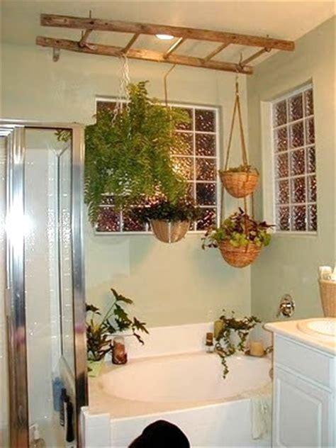 bathroom hanging plants ashbee design ladders in the bathroom