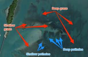 what s the best satellite map for inshore fishing