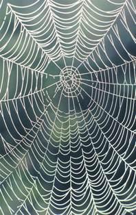 bid web how to make a big spider web ehow