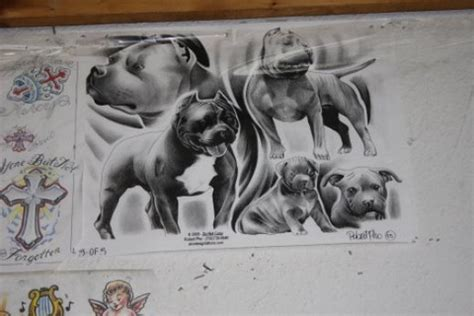 pitbull tattoo design ideas design