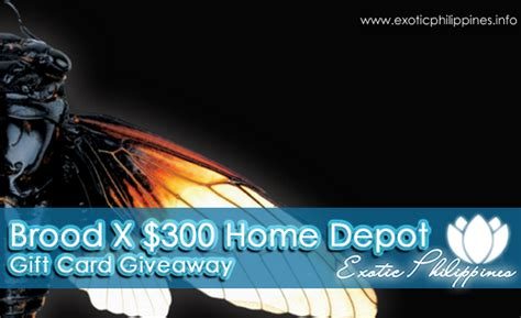 How Much Is On My Home Depot Gift Card - brood x 300 home depot gift card giveaway exotic philippines