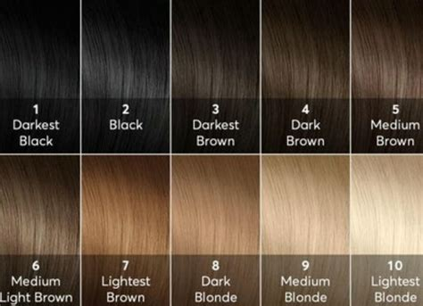 level 10 hair color 16 best hair color level chart images on hair