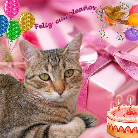 imagenes cumpleaños gatitos hermosas imagenes de gatitos deseando feliz cumplea 241 os