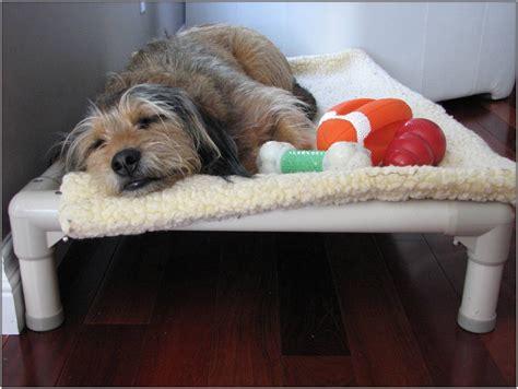 kitchen cabinet kuranda kuranda kitchen cabinets kuranda dog bed replacement fabric bedroom home