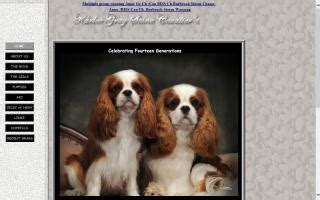 puppies for sale saratoga ny saratoga county new york directory and puppies for sale o puppy