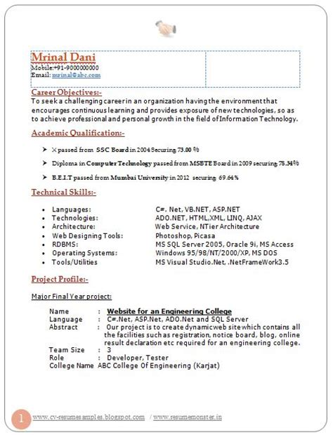Resume Career Objective Information Technology Professional Curriculum Vitae Resume Template For All Seekers Sle Template Of