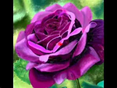 imagenes de flores del co las flores ex 243 ticas m 225 s bellas del mundo youtube