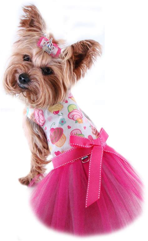 puppy dresses 25 best ideas about small clothes on small coats small