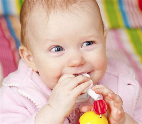 baby teething chew is infant teething a cause of vomiting livestrong
