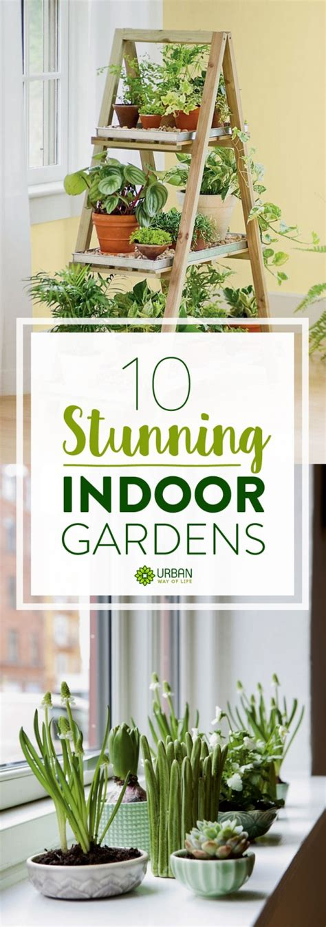 apartment plants ideas indoor gardening ideas diy inspiration for your