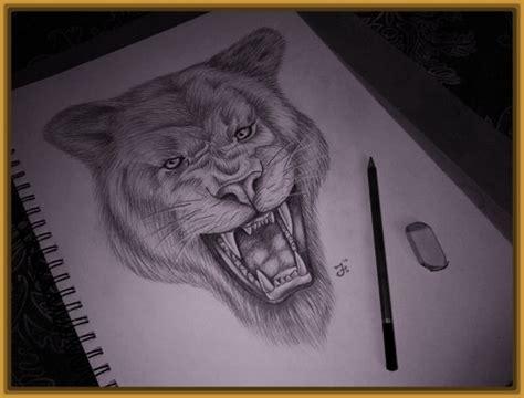 imagenes figurativas a lapiz imagenes de dibujos de tigres a lapiz en dibujos fotos
