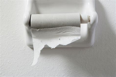 writing on toilet paper a toilet paper subscription business with a twist prospress