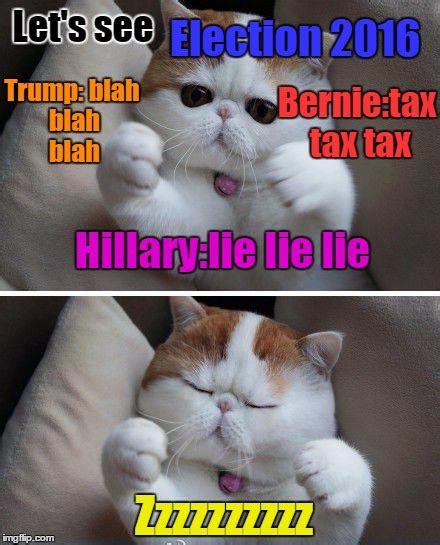 Newspaper Cat Meme - reading invisible newspaper imgflip