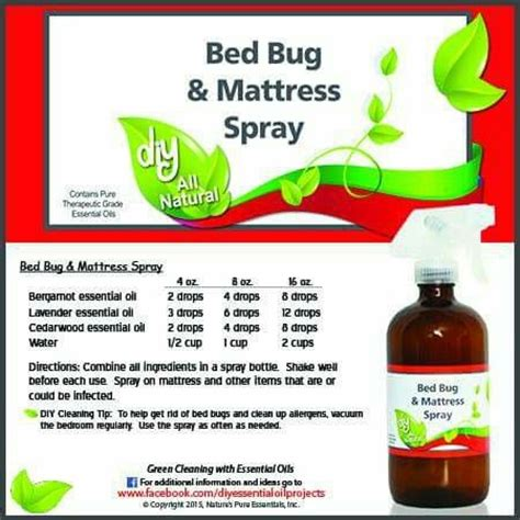 essential oils for bed bugs bed bug spray beds and bed bugs on pinterest