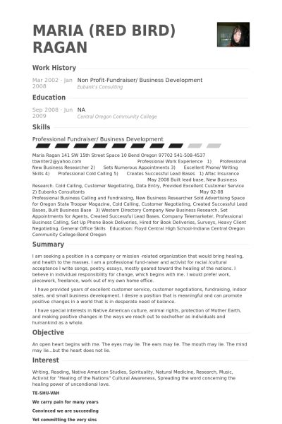 Sample Non Profit Resume by Non Profit Resume Samples Visualcv Resume Samples Database