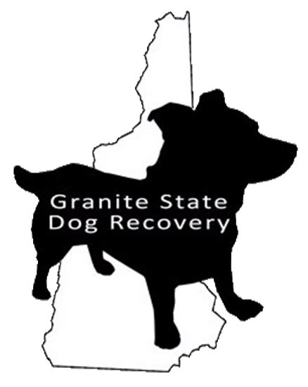 granite state recovery honoring nonprofits this season professional pet sitting and walking in