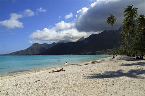 ya nui beach guide everything you need to know about ya temae beach moorea all you need to know before you go