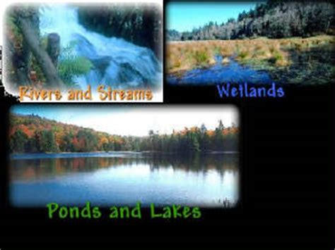 the biology of lakes and ponds biology of habitats series books freshwater biomes