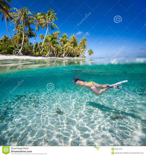 Caribbean House Plans by Woman Swimming Underwater Stock Photos Image 35074193